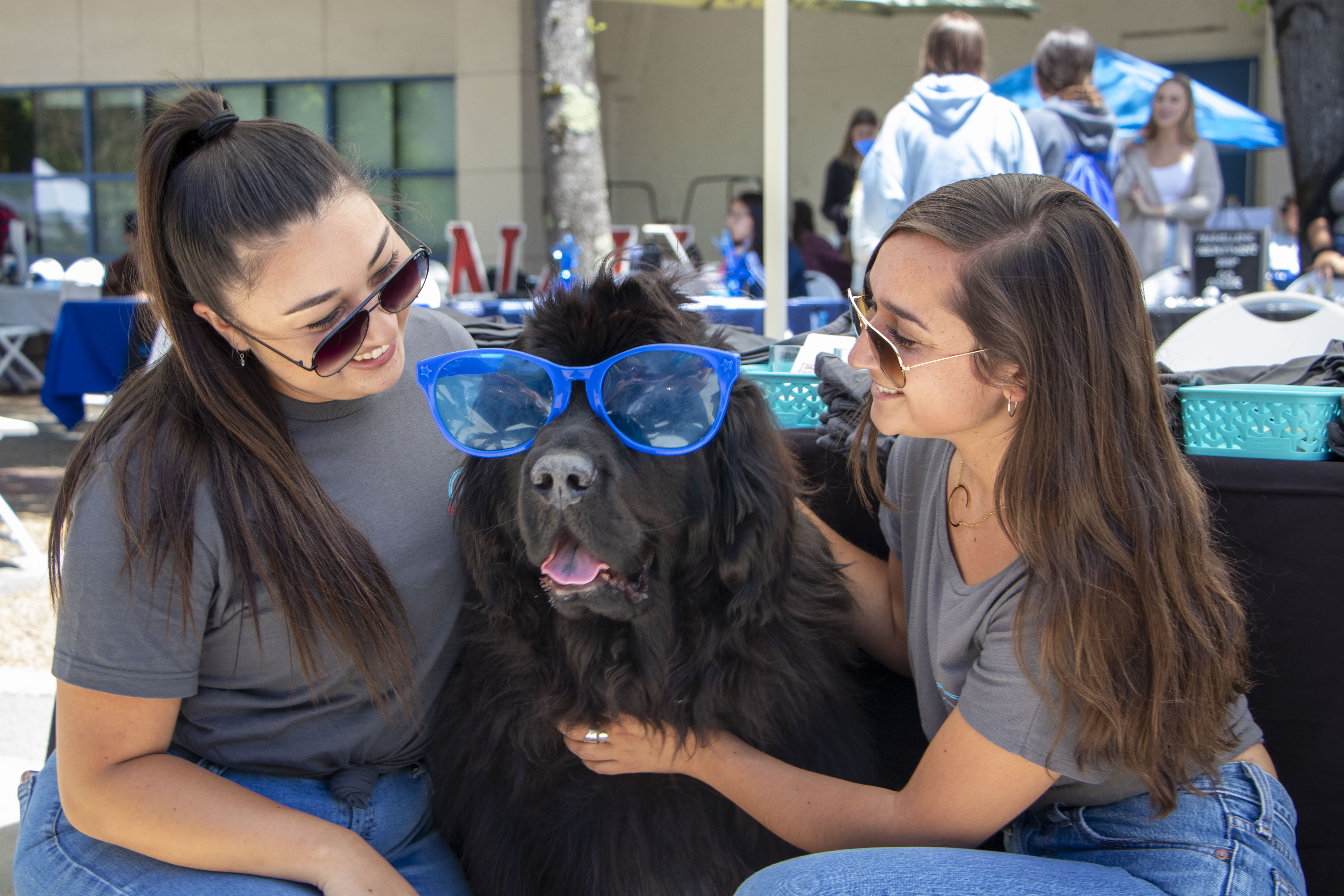 Bismarck the dog poses with two students